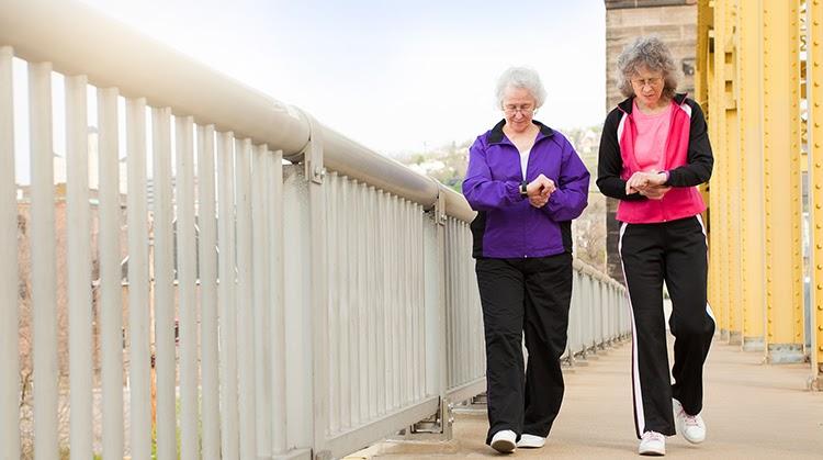 spierverlies, spierverlies veenendaal, spierverlies duiven spieren, verlies spiermassa, spierkracht, verminderde spierkracht, spieropbouw, sarcopenie, bewegen fysio, bewegen fysiotherapie, bewegen fysiotherapeut, beweging fysio, beweging fysiotherapie, beweging fysiotherapeut, valpartijen, moeilijk traplopen, moeite met uit stoel opstaan, moeite potje opendraaien